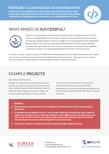 NetSuite Customisation & Development Flyer