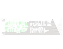 Sage Platinum Partner