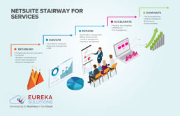 NetSuite SuiteSuccess Services Organisations