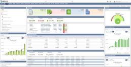 NetSuite Suitesuccess Financials first