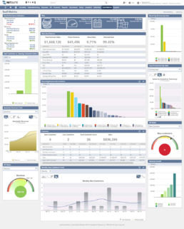 NetSuite SuiteSuccess for Software